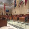 Stadio della Roma: tutti i nostri articoli e dossier