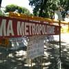 Cantiere Metro C a San Giovanni: perché tagliare alberi che potevano essere trapiantati?