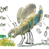 Vezio De Lucia: Vogliamo fermare davvero il consumo del suolo