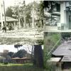 Caro consigliere municipale, Villa Massimo è stata salvata dai cittadini (e aspettiamo le scuse)