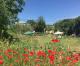 Il Regolamento orti urbani deve essere parte del sistema del verde e del paesaggio della città