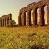 Appia Antica, il fragile equilibrio della strada di Cederna