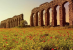 Appia: un Parco da salvare, subito!