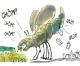 Eddyburg su proposta legge consumo di suolo di Salviamo il Paesaggio