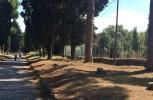 Rita Paris: L'area archeologica centrale e l'Appia Antica. Per una moderna cultura urbana