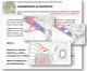 L'Osservatorio Stadio Tor di Valle chiede chiarimenti  (e avanza proposte)