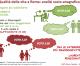 La qualità della vita e dei servizi pubblici a Roma: una Capitale con  la media del 5