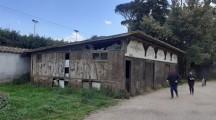 Villa Ada: se ne parla tanto ma resta l'abbandono