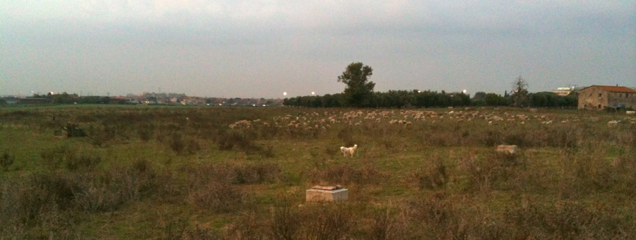 Parco di Gregna fotografato durante i sopraluoghi per Piediperterra a Morena