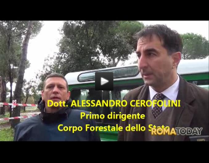 cerofolini roma today