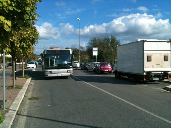 morena autobus