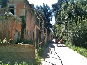Casale delle Cavalle Madri,  Villa Ada, II Municipio