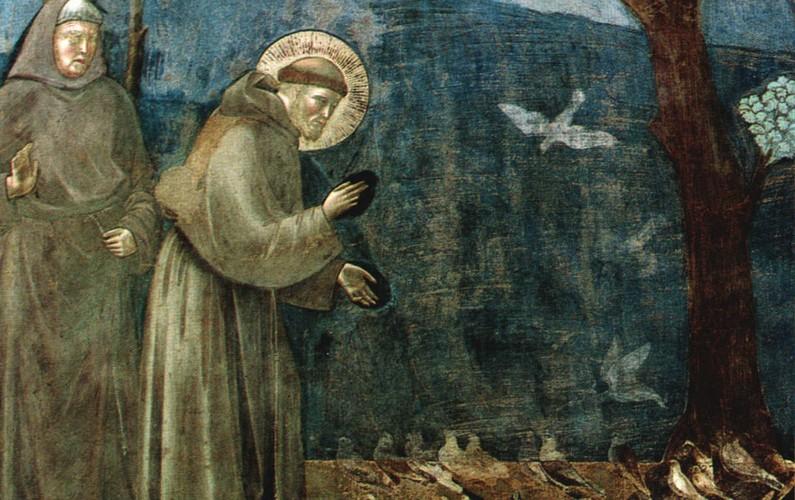 giotto-san-francesco-predica-agli-uccelli-795x500