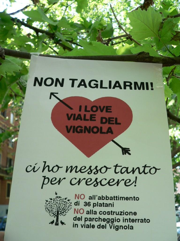 platani via del Vignola volantino P1130145
