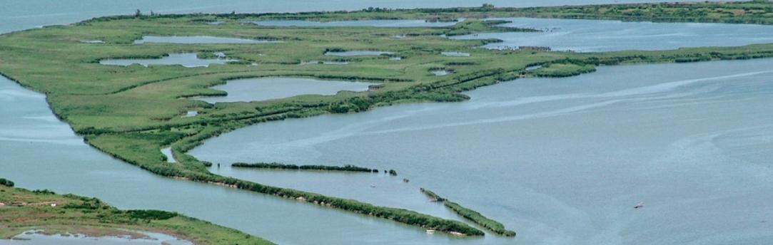 parco-regionale-delta-del-po-da-sito-omonimo