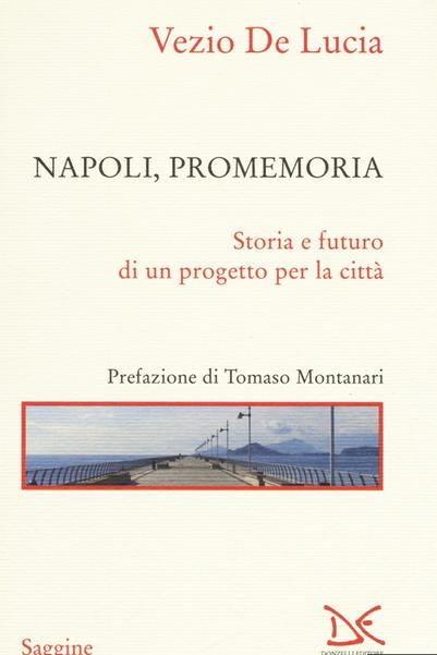 Libro Vezio De Lucia Napoli Promemoria