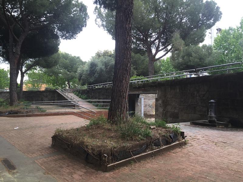 giardino Piazza Balsamo Crivelli foto ambm IMG_1043