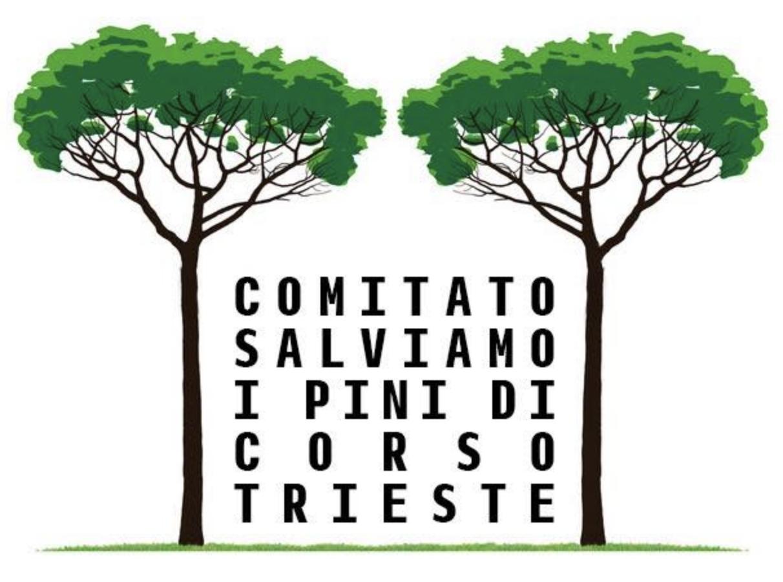 logo salviamo i pini di corso Trieste