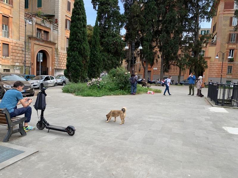 monopattino a piazza melozzo (foto ambm)