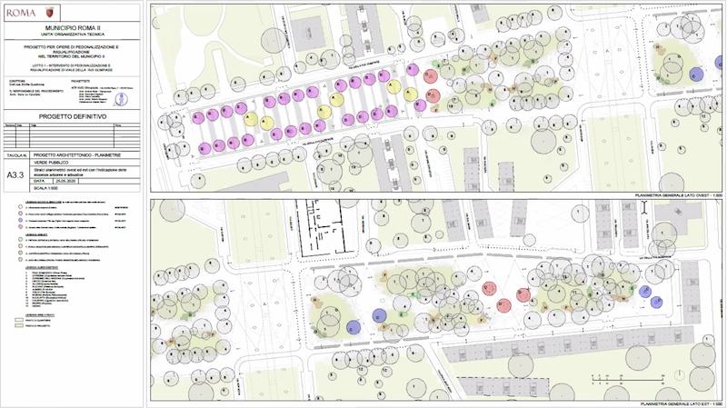 screen shot essenze arboree XVII olimpiade da assemblea pubblica Schermata 2020-06-05 alle 18.04.40